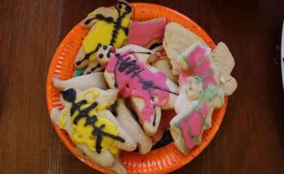 Skeleton Biscuits
